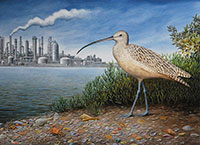 "Long Billed Curlew / Oil on canvas / 28"" x 42"""